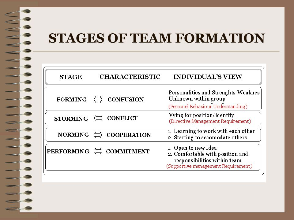 STAGES OF TEAM FORMATION