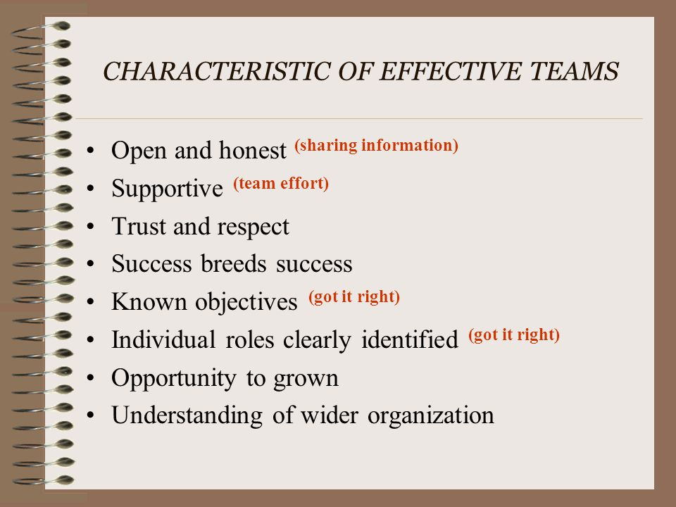 CHARACTERISTIC OF EFFECTIVE TEAMS Open and honest (sharing information) Supportive (team effort) Trust and respect Success breeds success Known object