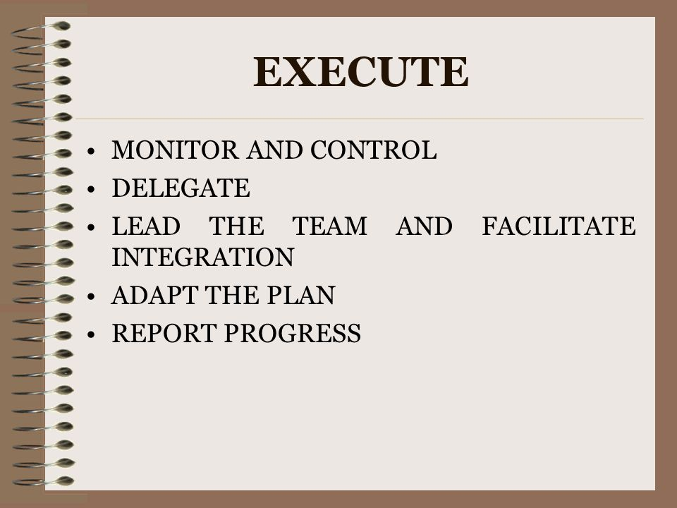 EXECUTE MONITOR AND CONTROL DELEGATE LEAD THE TEAM AND FACILITATE INTEGRATION ADAPT THE PLAN REPORT PROGRESS
