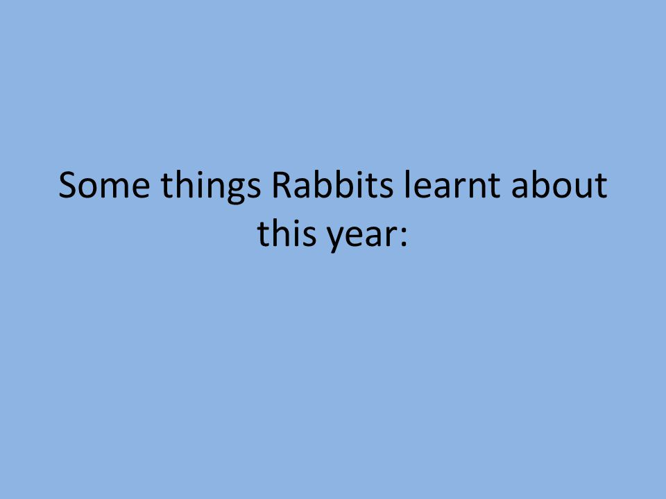 Some things Rabbits learnt about this year: