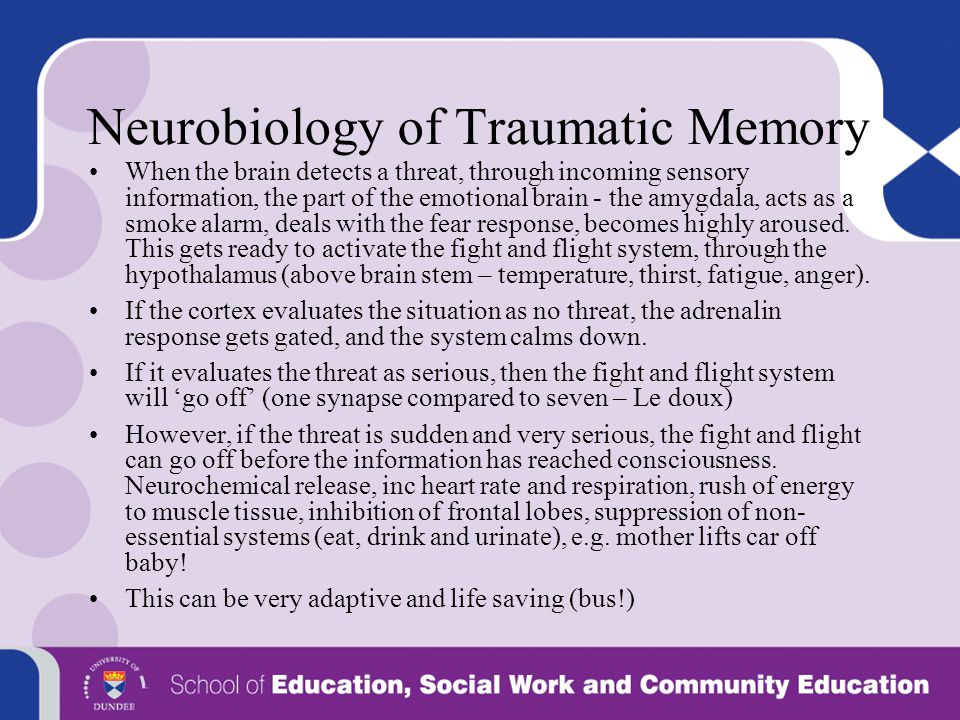 Neurobiology of Traumatic Memory When the brain detects a threat, through incoming sensory information, the part of the emotional brain - the amygdala