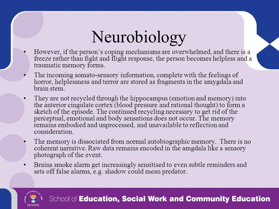 Neurobiology However, if the person's coping mechanisms are overwhelmed, and there is a freeze rather than fight and flight response, the person becom