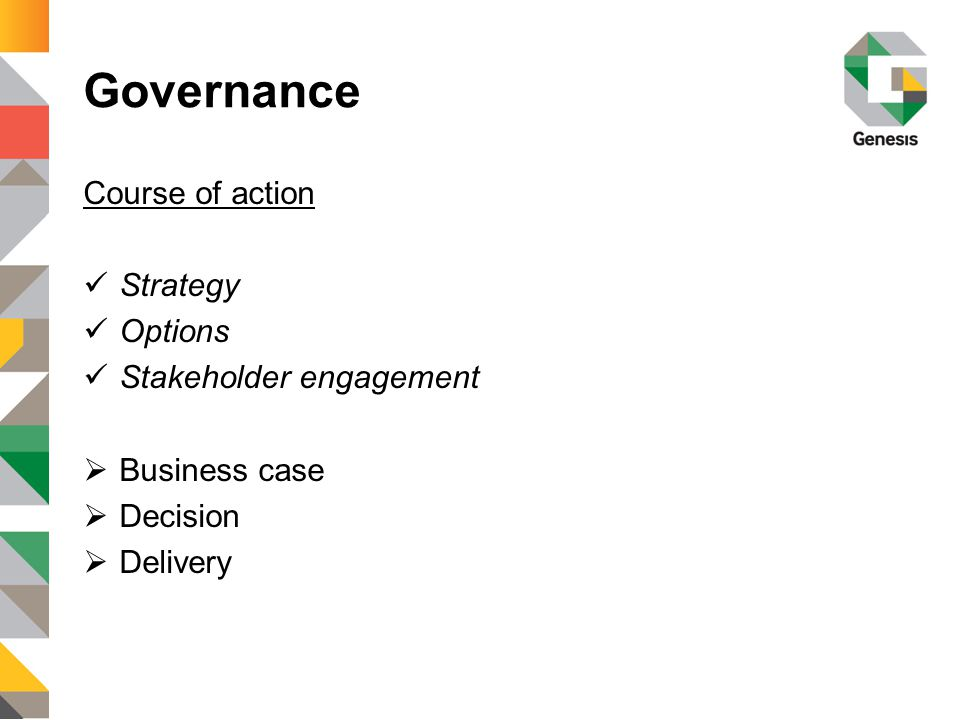 Governance Course of action Strategy Options Stakeholder engagement  Business case  Decision  Delivery