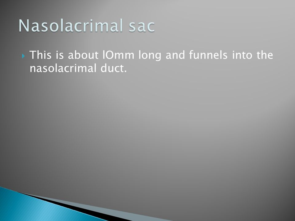 This is about lOmm long and funnels into the nasolacrimal duct.