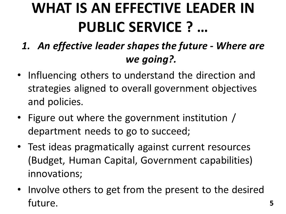 WHAT IS AN EFFECTIVE LEADER IN PUBLIC SERVICE .