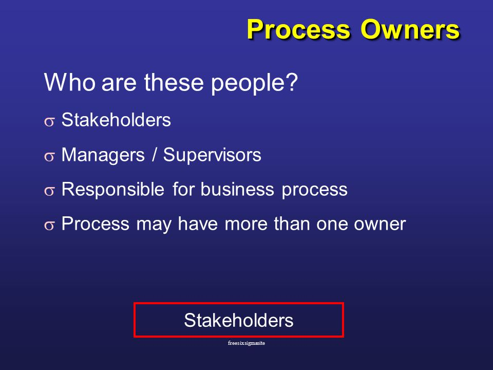 Process Owners Who are these people.