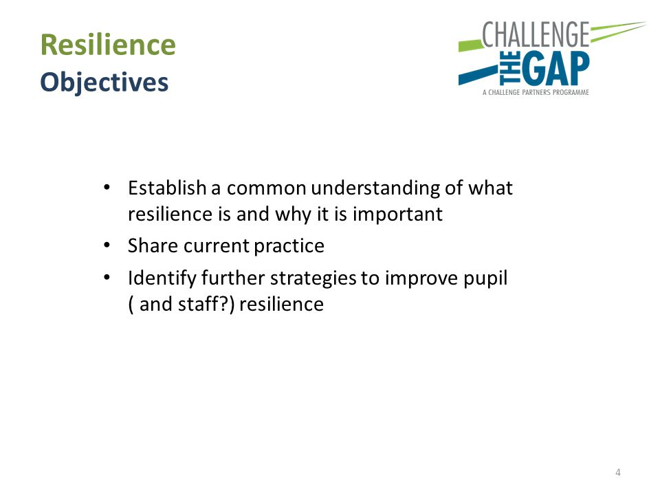 Resilience Objectives Establish a common understanding of what resilience is and why it is important Share current practice Identify further strategie