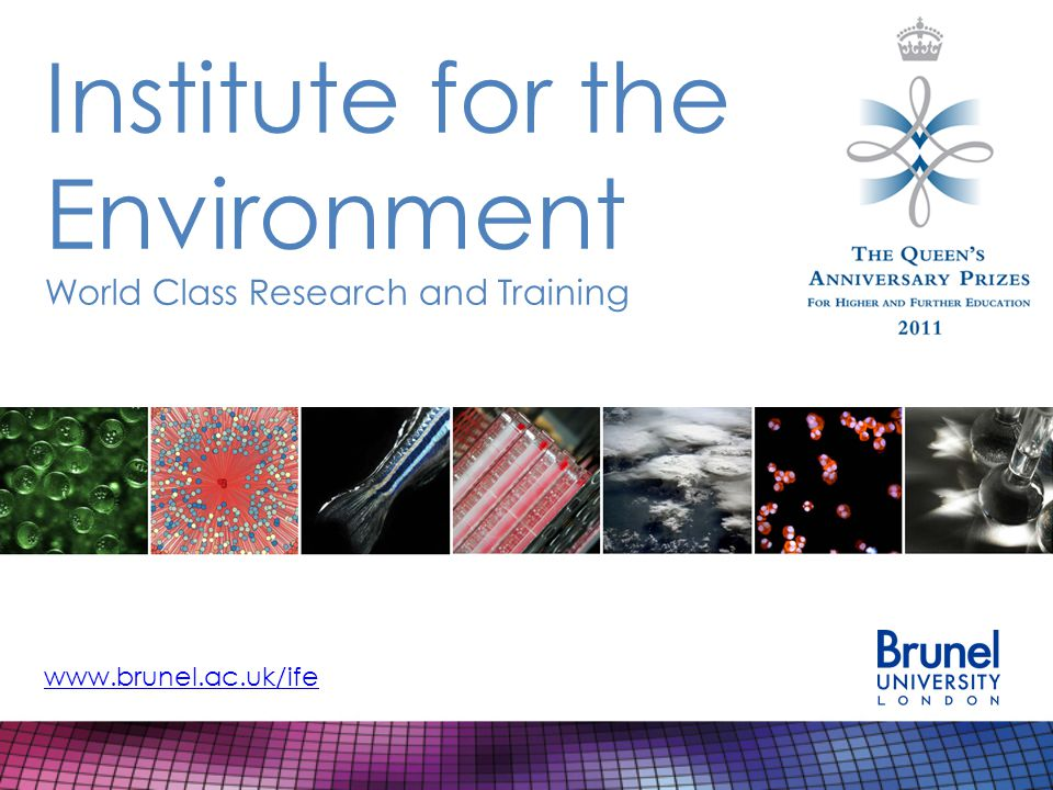 MSc in Toxicology and Risk Assessment Compulsory modules – Priority Pollutants and Human Health Effects – Essentials of Ecotoxicology – Designing, Analysing and Interpreting Toxicological Studies – Carcinogens and Mutagens – Current Practice in Chemical Risk Assessment – Chemical Regulation and Legislation – Dissertation Specialist optional modules, 2 out of 3: – Mixture Toxicology and Cumulative Risk Assessment – Reproductive Toxicology and Endocrine Disruption – Modeling and Predicting Toxicology http://www.brunel.ac.uk/ife/postgraduate-courses/toxicology-and-risk-assessment
