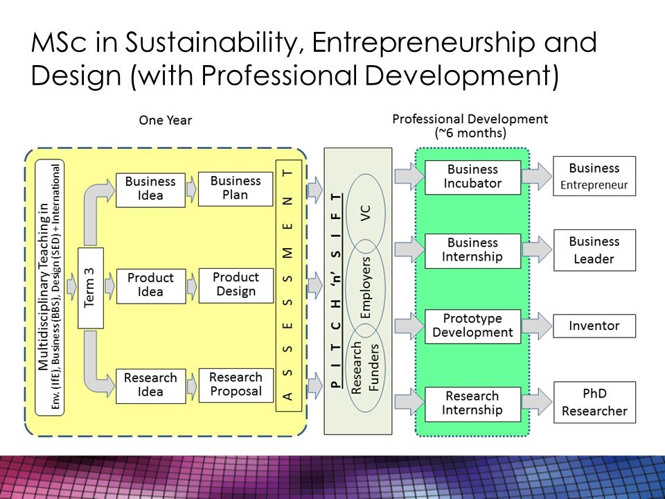 MSc in Sustainability, Entrepreneurship and Design (with Professional Development)