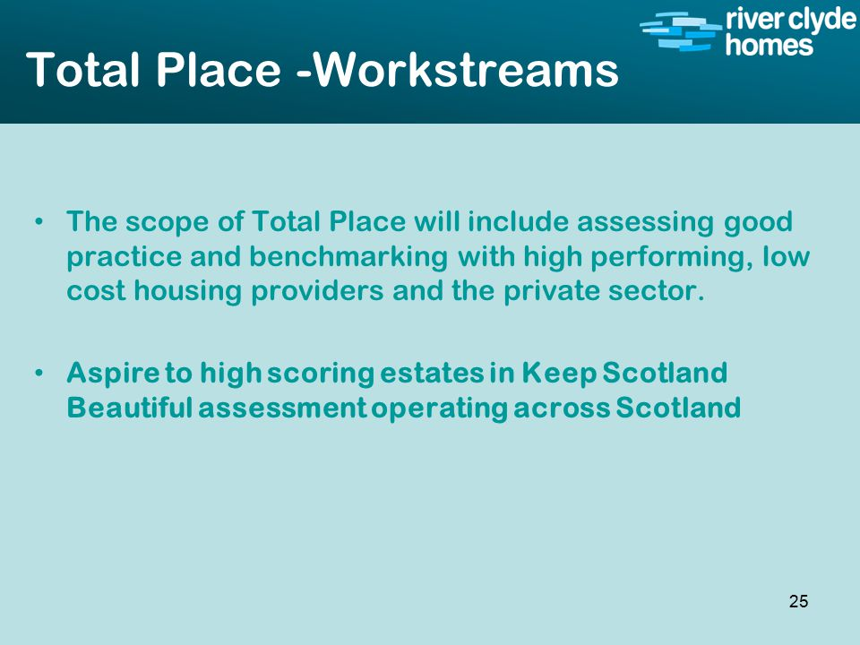 Intro slide Text Second level text Total Place -Workstreams The scope of Total Place will include assessing good practice and benchmarking with high performing, low cost housing providers and the private sector.