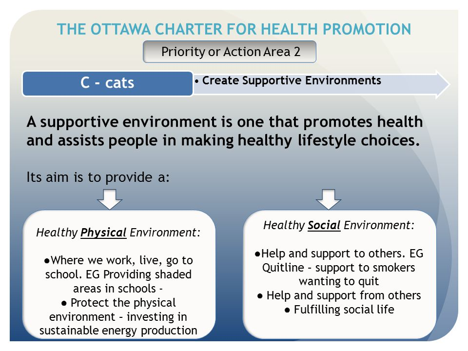 THE OTTAWA CHARTER FOR HEALTH PROMOTION Create Supportive Environments C - cats Priority or Action Area 2 A supportive environment is one that promote