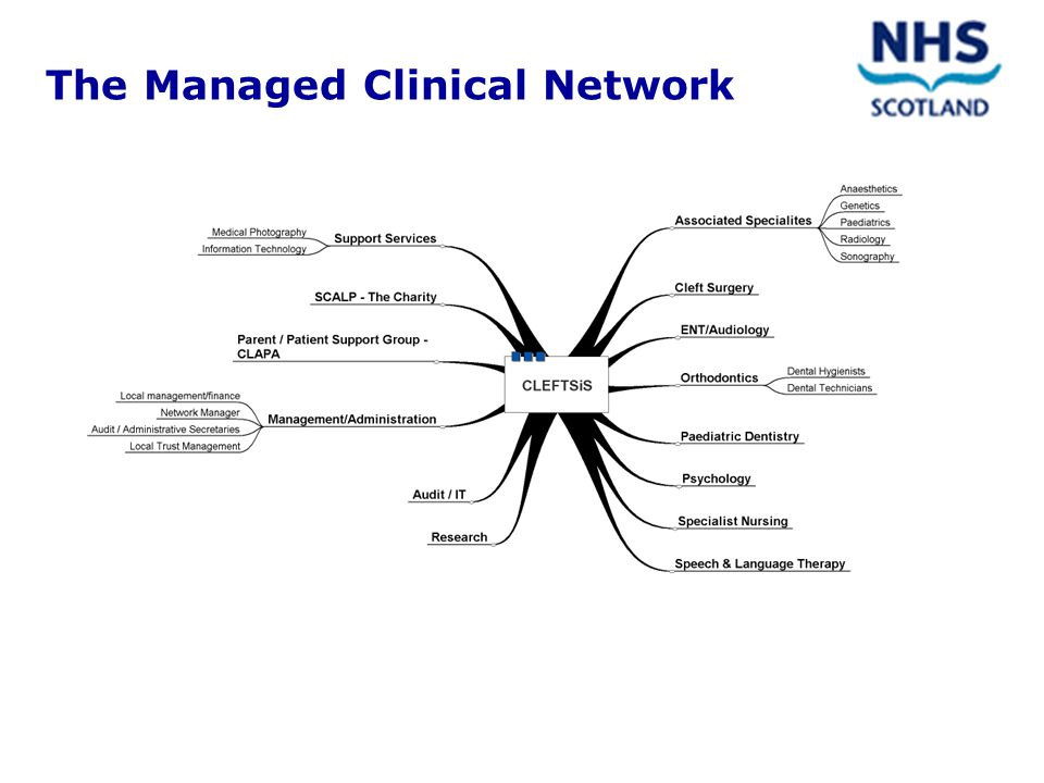 HDL (2002) 69 PROMOTING THE DEVELOPMENT OF MANAGED CLINICAL NETWORKS IN NHSSCOTLAND A key factor in the success of MCNs is the use of integrated clinical information systems that span traditional organisational barriers