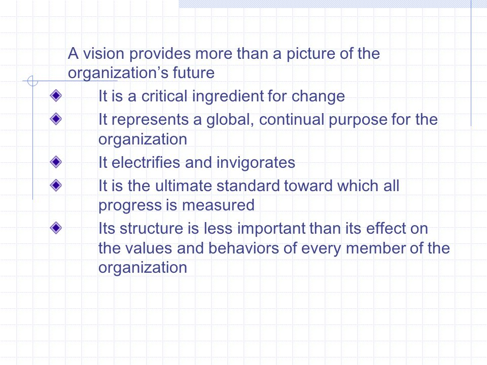 A vision provides more than a picture of the organization's future It is a critical ingredient for change It represents a global, continual purpose for the organization It electrifies and invigorates It is the ultimate standard toward which all progress is measured Its structure is less important than its effect on the values and behaviors of every member of the organization
