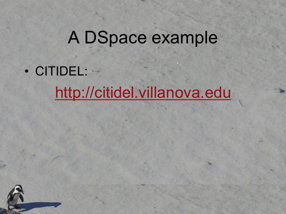 A DSpace example CITIDEL: http://citidel.villanova.edu