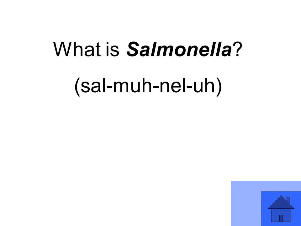 What is Salmonella? (sal-muh-nel-uh)