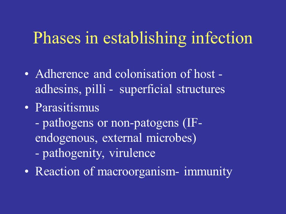 Phases in establishing infection Adherence and colonisation of host - adhesins, pilli - superficial structures Parasitismus - pathogens or non-patogens (IF- endogenous, external microbes) - pathogenity, virulence Reaction of macroorganism- immunity