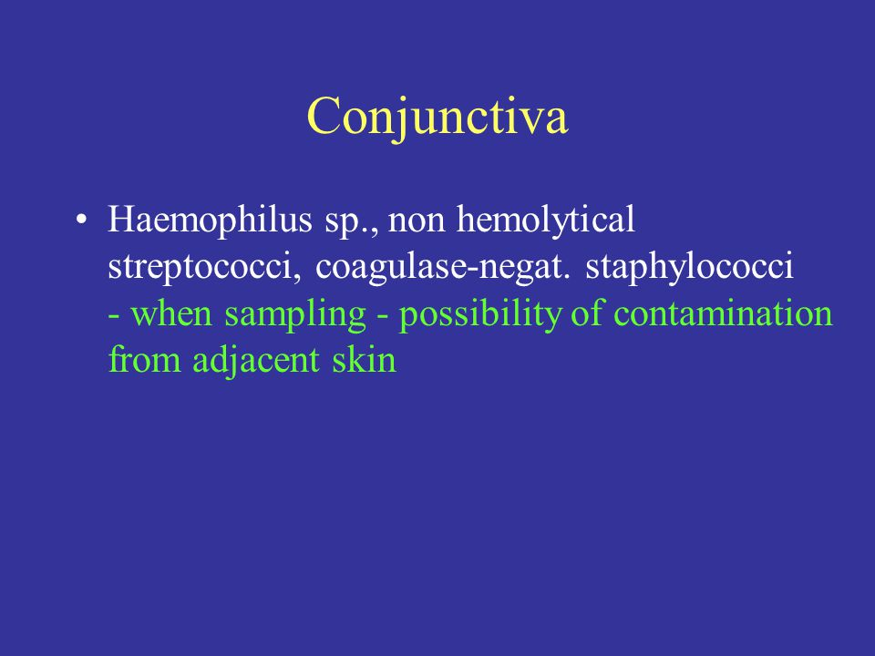 Conjunctiva Haemophilus sp., non hemolytical streptococci, coagulase-negat.