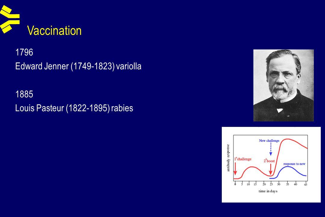 Vaccination 1796 Edward Jenner (1749-1823) variolla 1885 Louis Pasteur (1822-1895) rabies