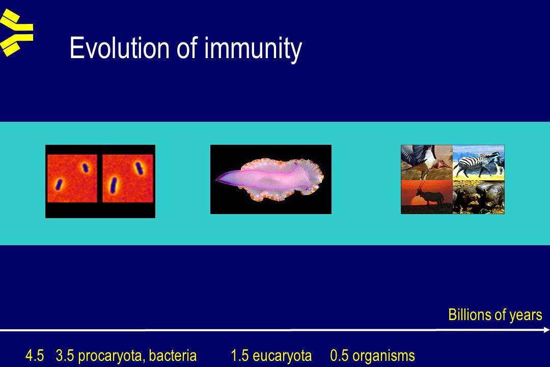 Evolution of immunity 4.5 3.5 procaryota, bacteria 1.5 eucaryota 0.5 organisms Billions of years