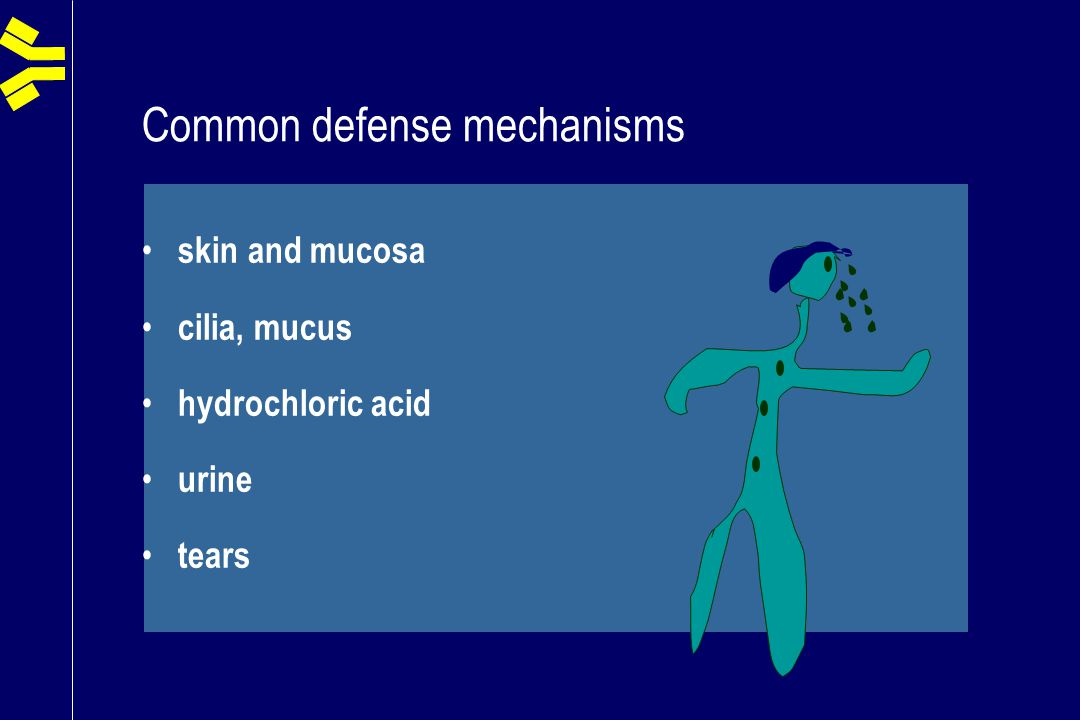 Common defense mechanisms skin and mucosa cilia, mucus hydrochloric acid urine tears