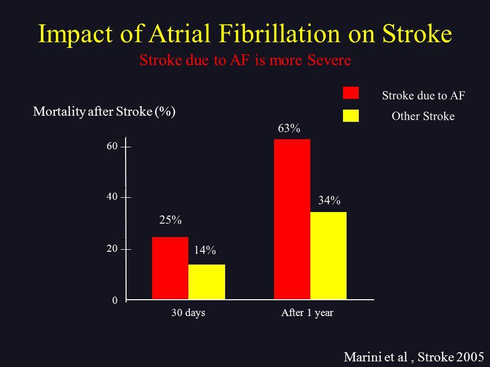 Impact of Atrial Fibrillation on Stroke Marini et al, Stroke 2005 Stroke due to AF is more Severe Mortality after Stroke (%) 60 0 25% 30 daysAfter 1 y