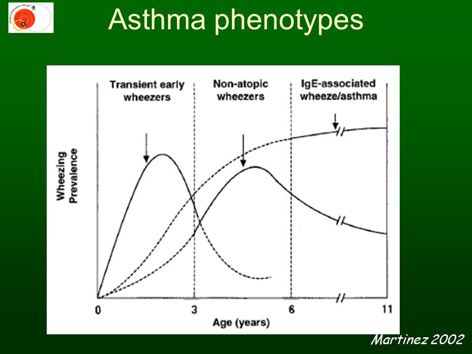 Asthma phenotypes Martinez 2002