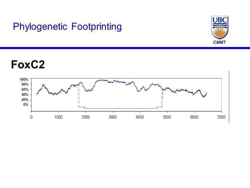 CMMT Phylogenetic Footprinting FoxC2 100% 80% 60% 40% 20% 0%