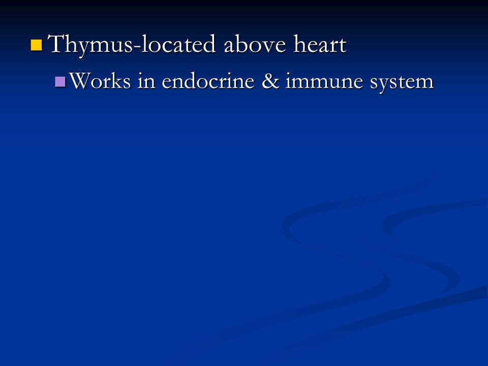 Thymus-located above heart Thymus-located above heart Works in endocrine & immune system Works in endocrine & immune system