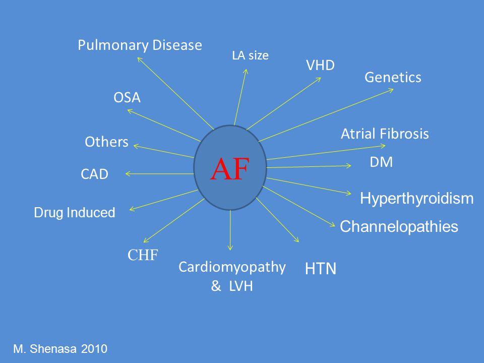 AF LA size VHD DM HTN Cardiomyopathy & LVH CHF CAD OSA Atrial Fibrosis Others Channelopathies Drug Induced Hyperthyroidism Pulmonary Disease Genetics M.