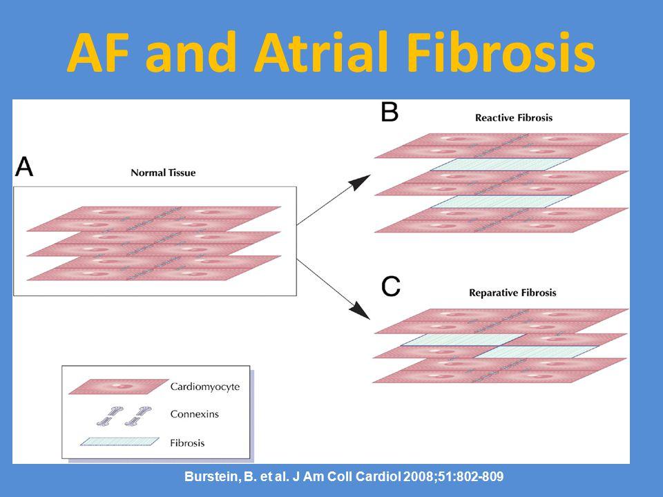 Burstein, B. et al. J Am Coll Cardiol 2008;51:802-809 AF and Atrial Fibrosis