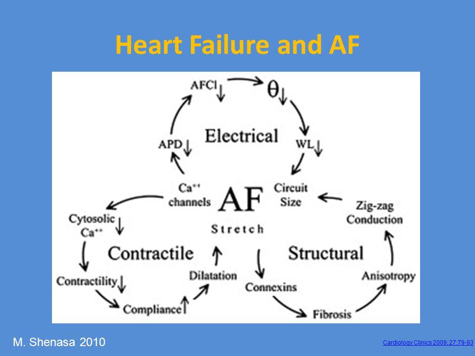 Cardiology Clinics 2009; 27:79-93 Heart Failure and AF M. Shenasa 2010
