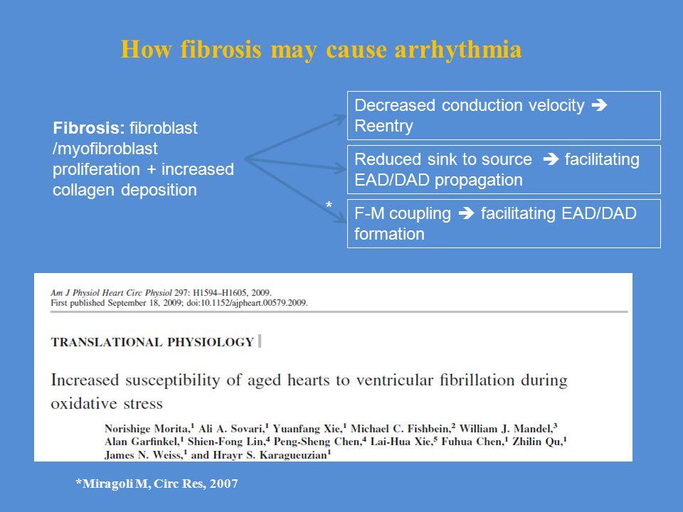 Fibrosis: fibroblast /myofibroblast proliferation + increased collagen deposition Decreased conduction velocity  Reentry Reduced sink to source  facilitating EAD/DAD propagation F-M coupling  facilitating EAD/DAD formation How fibrosis may cause arrhythmia *Miragoli M, Circ Res, 2007 *