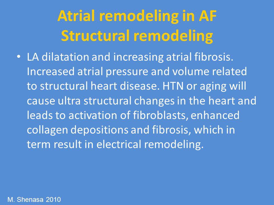 Atrial remodeling in AF Structural remodeling LA dilatation and increasing atrial fibrosis.