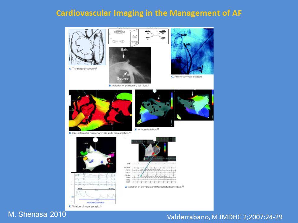 Cardiovascular Imaging in the Management of AF Valderrabano, M JMDHC 2;2007:24-29 M. Shenasa 2010