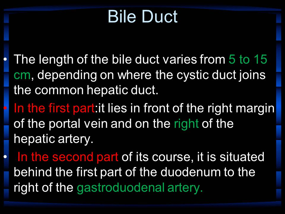Bile Duct The length of the bile duct varies from 5 to 15 cm, depending on where the cystic duct joins the common hepatic duct. In the first part:it l
