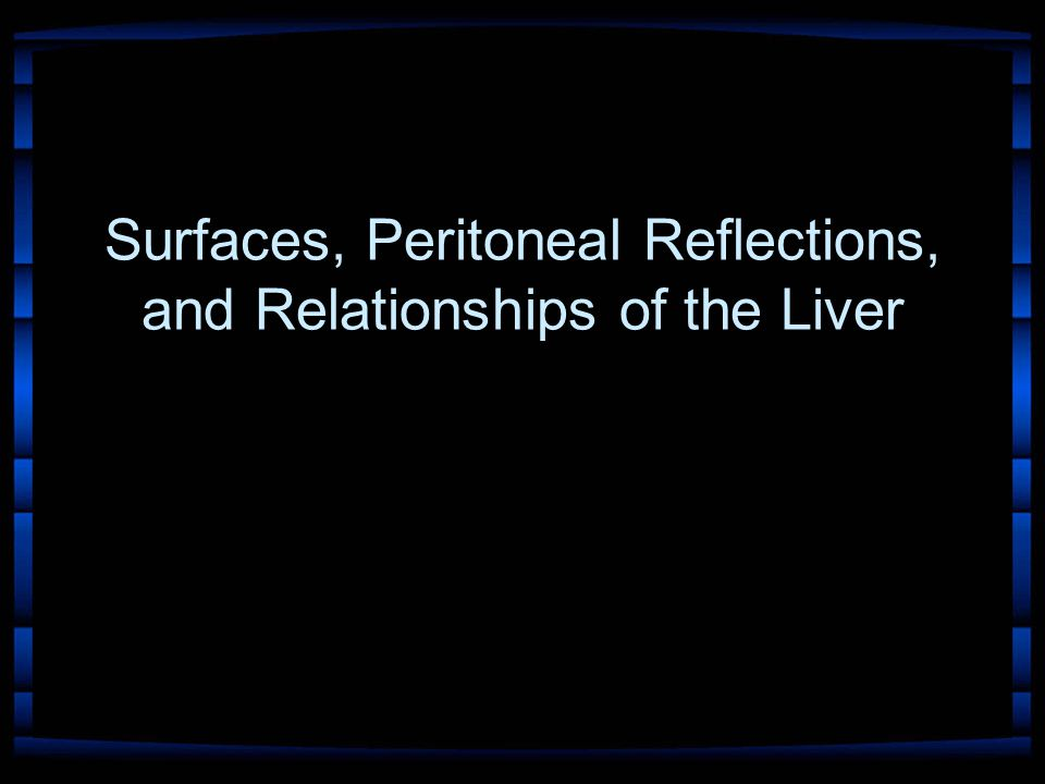 Surfaces, Peritoneal Reflections, and Relationships of the Liver
