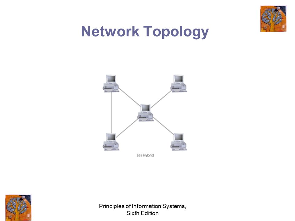Principles of Information Systems, Sixth Edition Network Topology