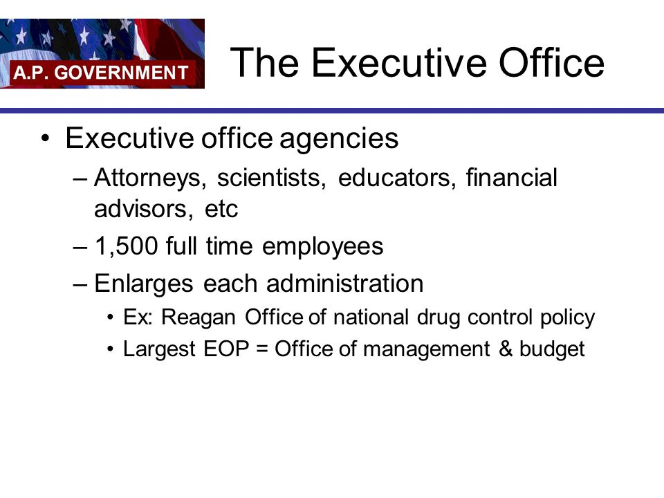 The Executive Office Executive office agencies –Attorneys, scientists, educators, financial advisors, etc –1,500 full time employees –Enlarges each ad