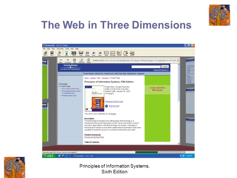 Principles of Information Systems, Sixth Edition The Web in Three Dimensions