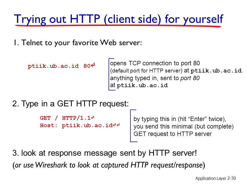 Application Layer 2-30 Trying out HTTP (client side) for yourself 1.