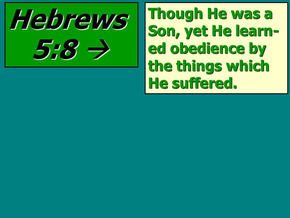 Though He was a Son, yet He learn- ed obedience by the things which He suffered. Hebrews 5:8 