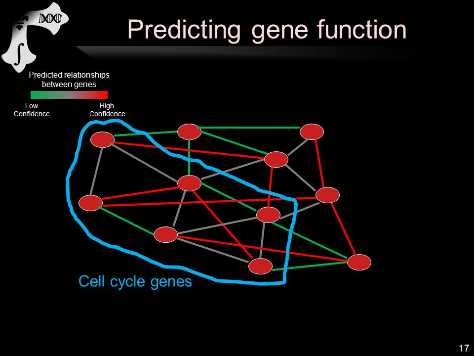 Predicting gene function 17 Cell cycle genes Predicted relationships between genes High Confidence Low Confidence