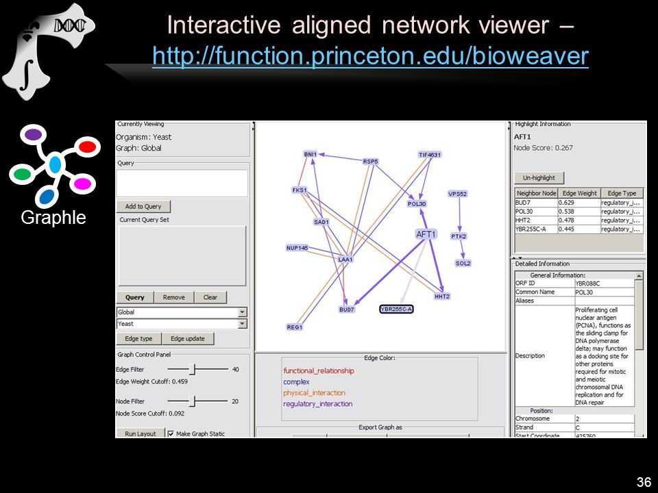 Interactive aligned network viewer – http://function.princeton.edu/bioweaver http://function.princeton.edu/bioweaver 36 Graphle