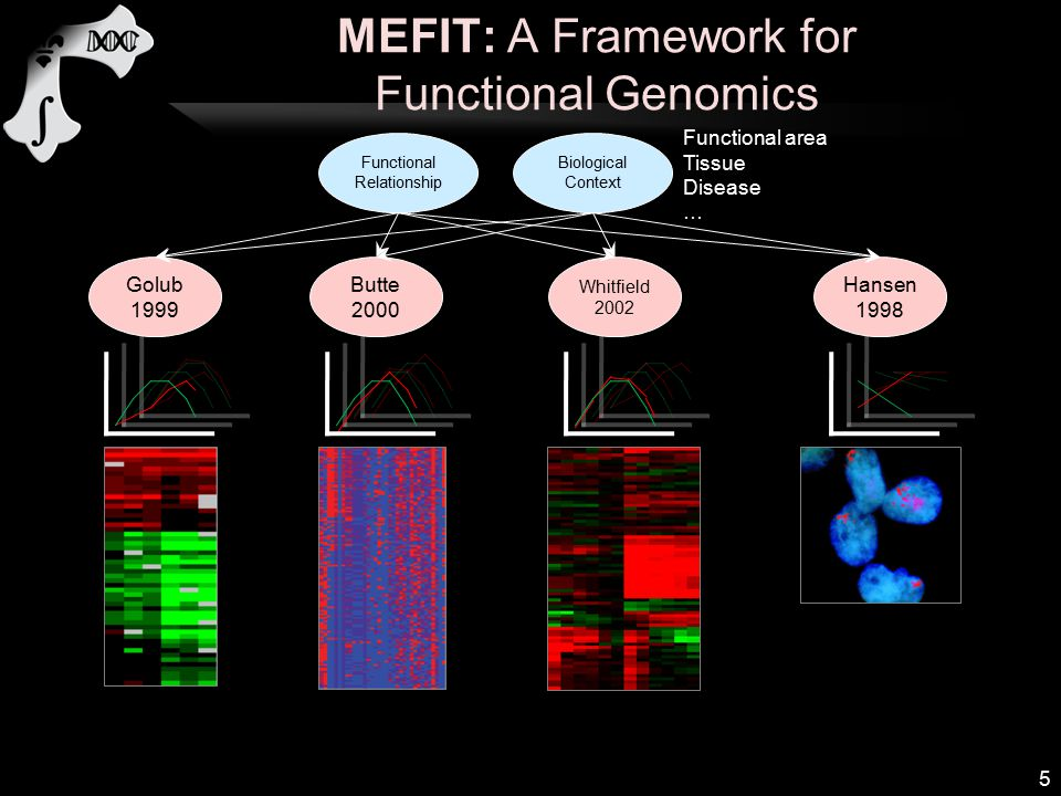 MEFIT: A Framework for Functional Genomics 5 Golub 1999 Butte 2000 Whitfield 2002 Hansen 1998 Functional Relationship Biological Context Functional area Tissue Disease …