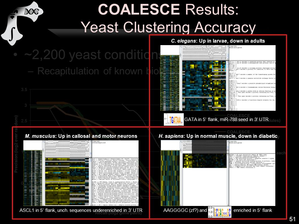 COALESCE Results: Yeast Clustering Accuracy ~2,200 yeast conditions –Recapitulation of known biology from Gene Ontology 51 ASCL1 in 5' flank, unch.