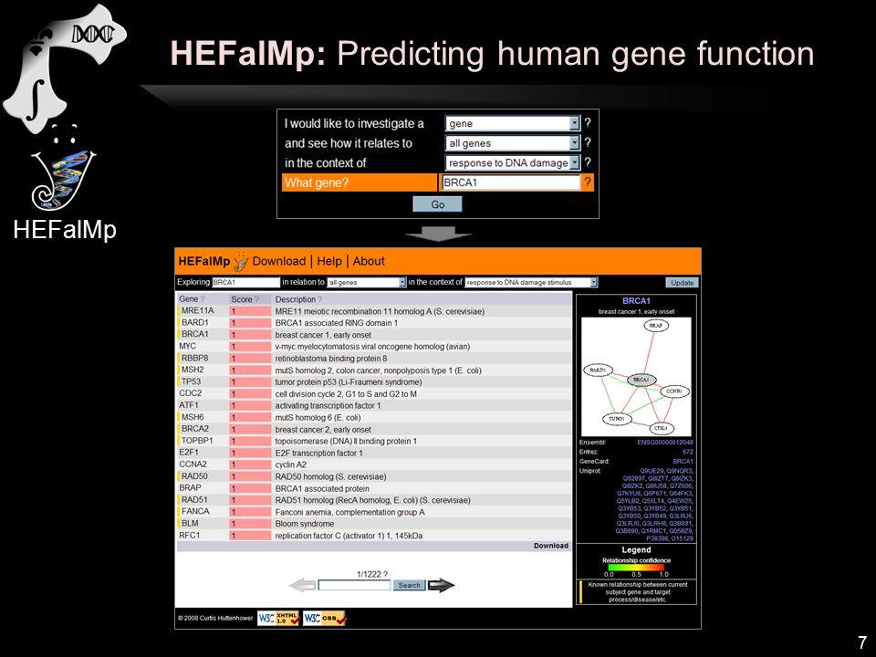 HEFalMp: Predicting human gene function 7 HEFalMp