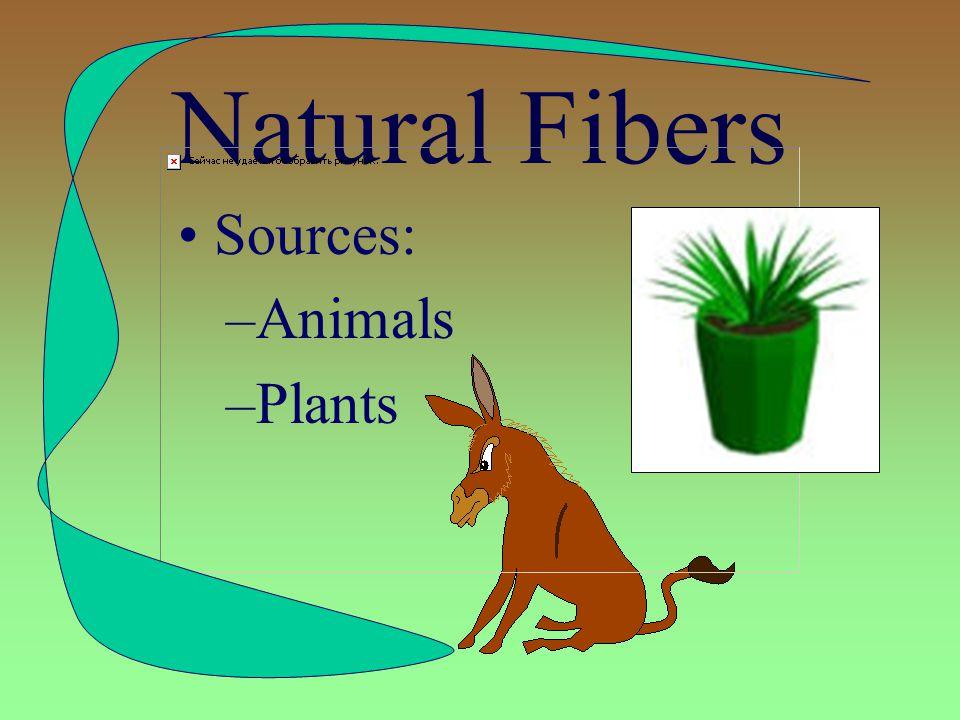 Types of Fibers