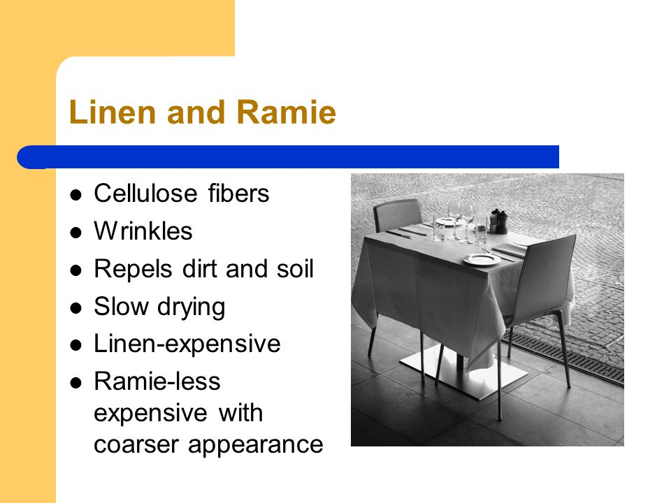 Linen and Ramie Cellulose fibers Wrinkles Repels dirt and soil Slow drying Linen-expensive Ramie-less expensive with coarser appearance