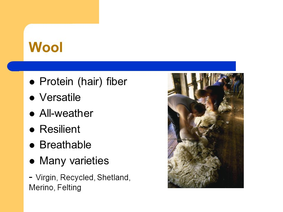 Wool Protein (hair) fiber Versatile All-weather Resilient Breathable Many varieties - Virgin, Recycled, Shetland, Merino, Felting