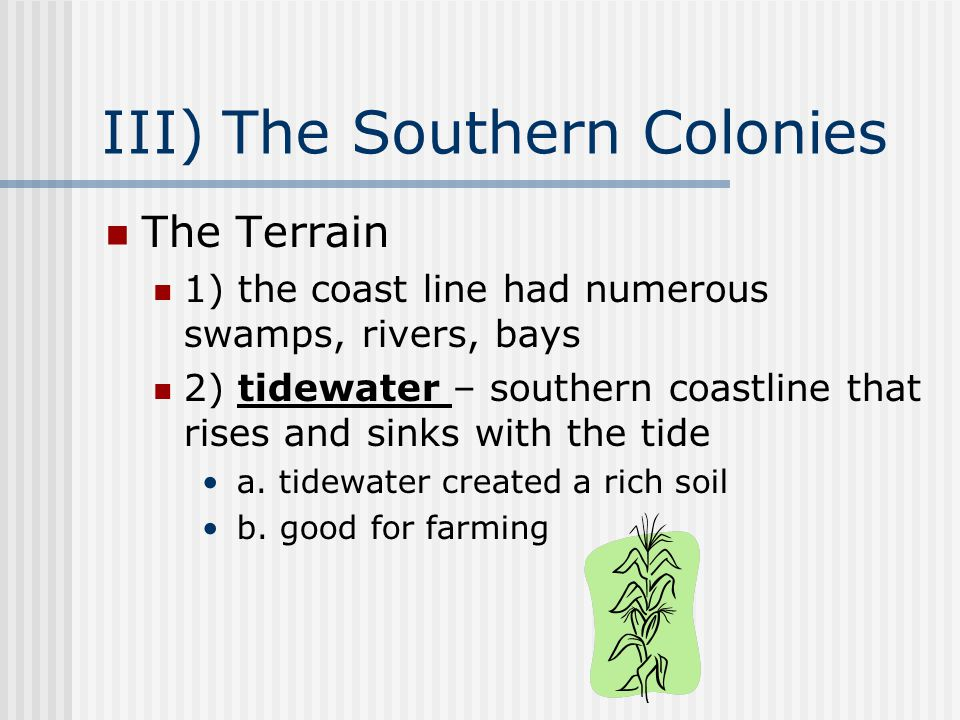 III) The Southern Colonies The Terrain 1) the coast line had numerous swamps, rivers, bays 2) tidewater – southern coastline that rises and sinks with